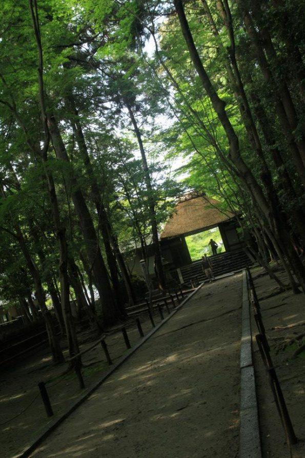 zen_temple2